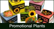 Promotional Plants