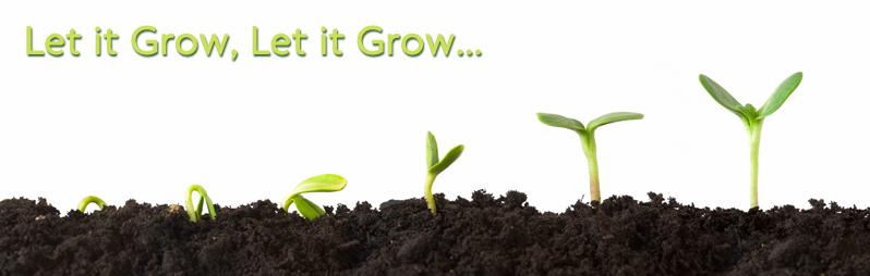 Let it grow, let it grow